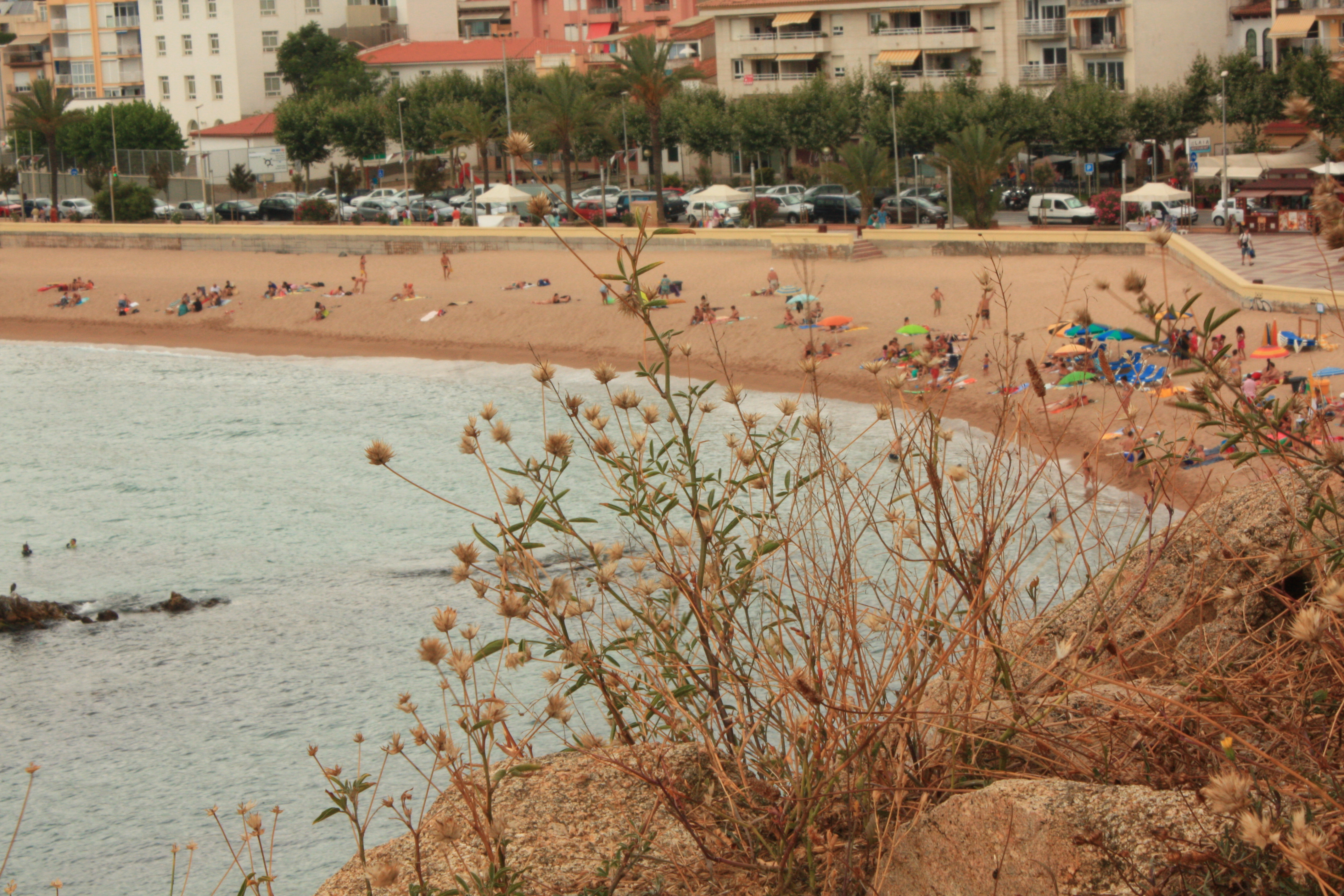 Blanes5